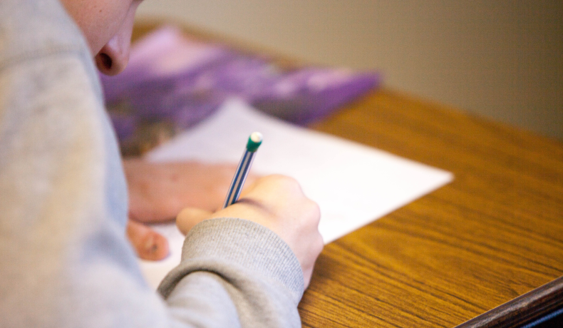 Classification Essay – A Guide On Doing The Task Easily